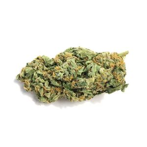 buy Jack Herer, buy Jack Herer marijuana, buy Jack Herer weed In Australia, buy Jack Herer weed In Austria, buy Jack Herer weed In France, buy Jack Herer weed In Hungary, buy Jack Herer weed In Italy, buy Jack Herer weed In Japan, buy Jack Herer weed In UK, buy Jack Herer weed online, buy Jack Herer weed USA, buy marijuana weed online, Jack Herer, JACK HERER EXPERIENCE, JACK HERER SEEDS, MMJ, mmj express, mmj online system, moonrock cannabis, moroccan hash, most potent afghani strains, mowie wowie weed, nova weed, nuken strain, nyc diesel, OG KUSH, og vape pen, online dispensary canada, ONLINE DISPENSARY EDIBLES, ONLINE DISPENSARY SHIPPING, online dispensary shipping usa, online ordering, online weed dispensary, online weed store, Order Afghan Kush, order cannabis, order cannabis online, order dabs online, order edibles, order edibles online, order edibles online review, order marijuana, order marijuana edibles online, order marijuana online, order real weed online, order thc edibles online, order weed, order weed edibles online, ORDER WEED ONLINE, phoenix tears for sale, phoenix tears oil for sale, phoenix tears reviews, phoenix tears thc, pineapple afghani effects, pink marijuana, pink starburst strain, pink starburst weed, purchase marijuana online, purchase weed online, purple shatter, red congolese, rx cannabis online sale, selling weed online, shipping edibles, shipping wax in the mail, snoop dogg moon rocks, snoops dream, snoops dream strain, starburst strain, stoner slang, sun rocks vs moon rocks, tara weeds, terra blueberries, terra cannabis, terra com mail, terra life, terra mail usa, thc candy, thc concentrate for sale, thc crystalline for sale, thc edibles for sale, thc edibles online, thc gum, thc gummies for sale, thc peanut butter, thc shipping, toronto dispensary no card, tuna kush, vancouver dispensary no card, vancouver weed shops, vape pen cartridge refill, vape refills, weed brownies for sale, weed candy, weed candy for sale, weed dispensary toronto, weed distillate, weed edibles, weed edibles delivery, weed edibles for sale, weed edibles for sale online, weed edibles online, weed flower, weed for sale, weed for sale online, WEED FOR SALE ONLINE 420 MAIL ORDER, weed for sale online cheap, weed gummies for sale, weed online, weed online cheap, weed pen, weed seeds, weed shop online, weed websites to buy from, what are phoenix tears, what are sun rocks, what is budder, where can i buy afghan kush, where can i buy edibles, where can i buy marijuana, where can i buy marijuana online, where can i buy weed online, where can i get weed online, where did the term 420 come from, where to buy cannabis, where to buy dabs online, where to buy edibles, where to buy edibles online, where to buy marijuana online, where to buy shatter wax online, where to buy weed online, where to get edibles, where to get weed online, where to order weed online, white castle strain, your cannabis orders